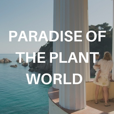 paradise of the plant world