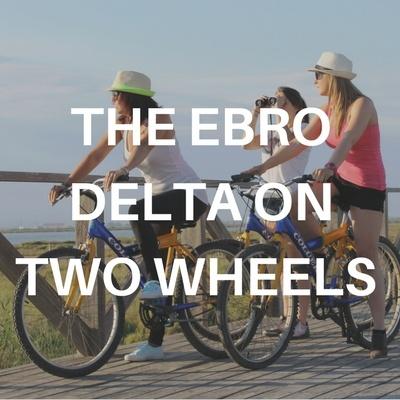 the Ebro Delta
