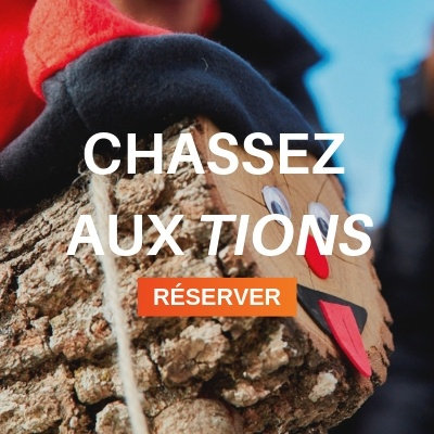 Chassez aux tions
