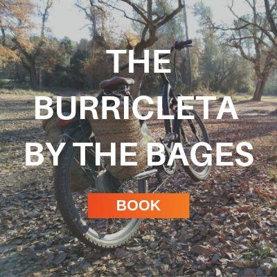 burricleta