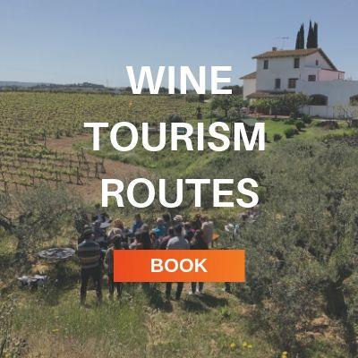 wine tourism routes